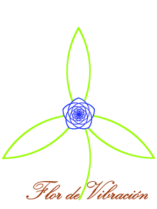 flordevibracion logo