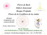 Imagen Terapia Floral